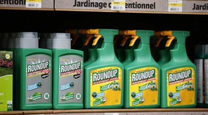 US lawsuits build against Monsanto over alleged Roundup cancer link