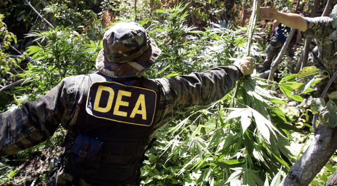 DEA Must Stop Interfering With Legal Medical Marijuana Dispensaries, Federal Court Rules