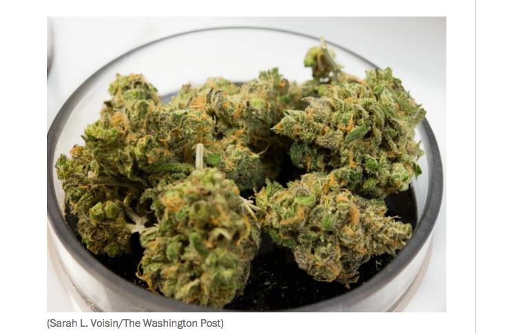 why big pharma hates legal weed