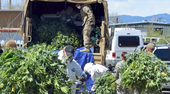 How Anti-Mafia Laws Could Bring Down Legal Pot